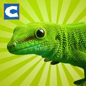 Lizard Simulator icon