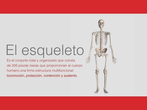 CLASA MÁS screenshot 7