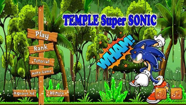 Temple Super Sonic Run screenshot 1