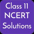 Class 11 NCERT Solutions