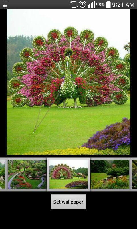 Garden Hd Wallpapers For Android Apk Download