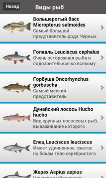 Рыбалка Lite screenshot 11