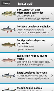 Рыбалка Lite screenshot 1