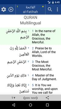 Quran. 44 Languages Text Audio poster