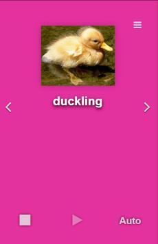 English Animals screenshot 1