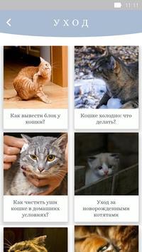Забота о кошках screenshot 1