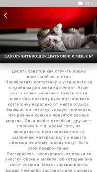Забота о кошках screenshot 4
