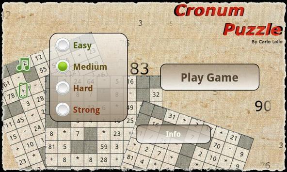 Cronum Puzzle poster