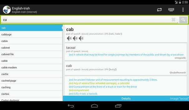 English-Irish Dictionary apk screenshot