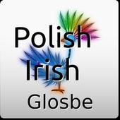 Polish-Irish Dictionary icon