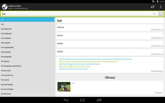 polsko - polski słownik screenshot 9