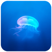 Jellyfish CM locker Theme icon