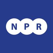 NPR New Parts Ricambi icon