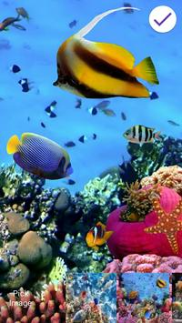 Aquarium Fish 3D Lock Screen poster