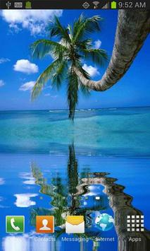 Coconut Tree on the Beach LWP poster
