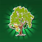 Nature Knowledge icon