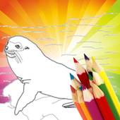 Animal Coloring For Children : Seals Edition icon