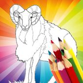 Animal Coloring For Children : Sheep Edition icon