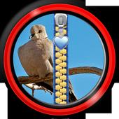 Zipper Lock Screen – Doves icon