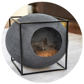 Cool Cat House Designs icon