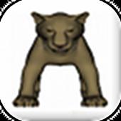 Jungle Slots icon