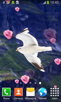 Seagull Live Wallpapers apk screenshot
