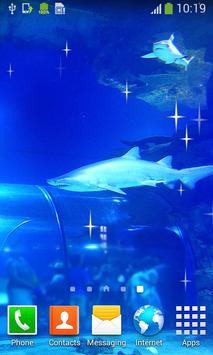Shark Live Wallpapers apk screenshot