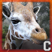 The Giraffe Simulator icon