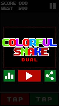Colorful Snake Dual poster