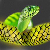 Colorful Snake Live Wallpaper icon