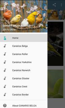 CANARIO BELGA CAMPAINHA LUTEUS apk screenshot