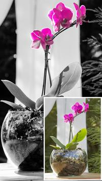 Color Splash Effect Photo Editor - Photo Montage screenshot 7