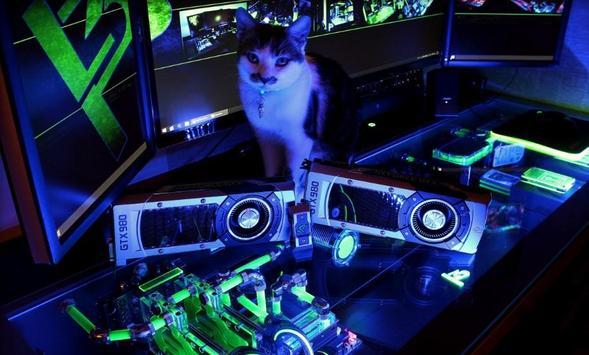 Computer Table Gaming screenshot 5