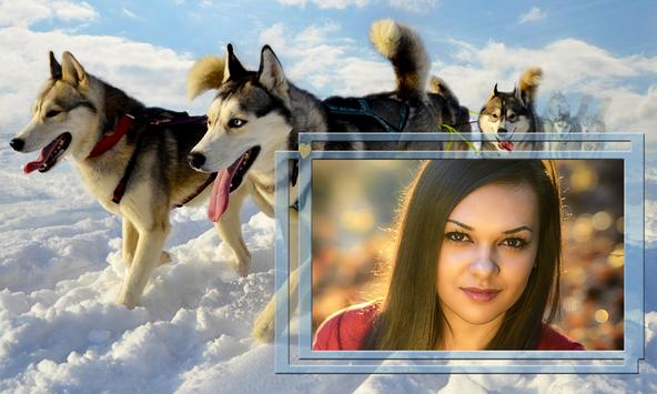 Animals Photo Frames apk screenshot
