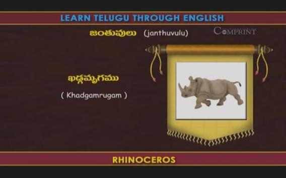 Learn Telugu Through English screenshot 11