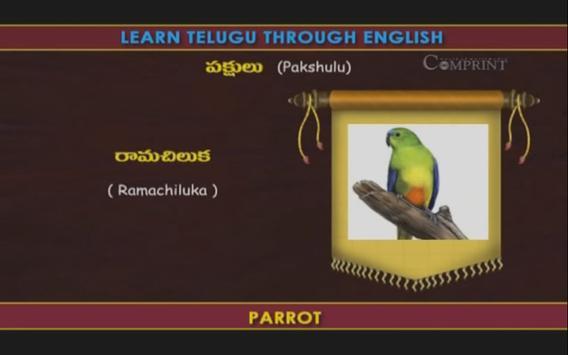 Learn Telugu Through English screenshot 4