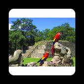 Conoce Honduras icon