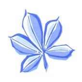 KBS St. Joseph icon
