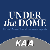 KAIA - Under the Dome icon