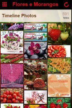 Festa de Flores e Morangos screenshot 1