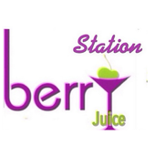 Berry Station icon