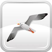Seagull Book icon
