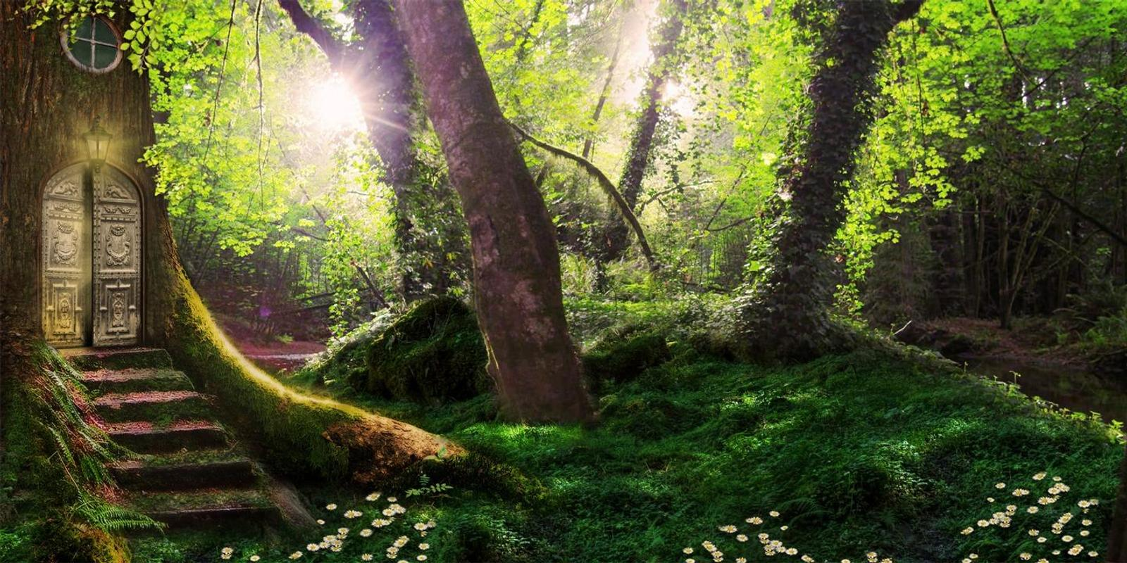 Magic forest live wallpaper for Android - APK Download