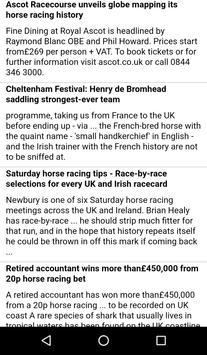 Horse racing Fest screenshot 1
