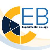 EB Annual Meetings icon