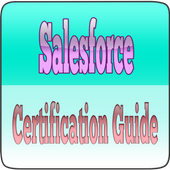 Salesforce Certification Guide icon