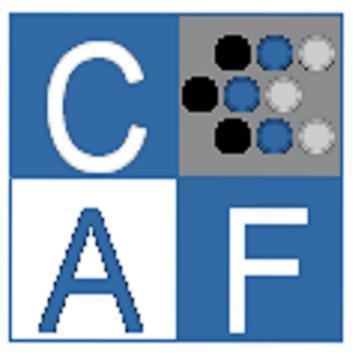 Corporativo CAF screenshot 2