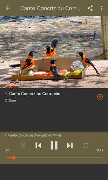 CORRUPIÃO EM VALPARAÍSO CANTANDO O HINO apk screenshot