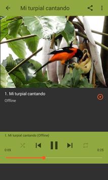 Toque para Celular - Corrupião apk screenshot