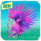 NEW BETTA FISH ( CUPANG ) IMAGE FAV icon